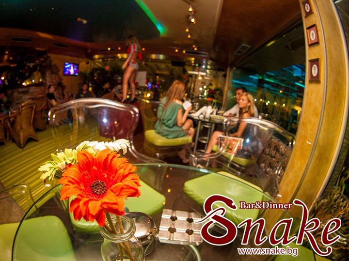 Snake Bar & Grill 5